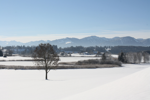 Allgäuer Winter 2016